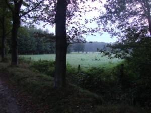 Oostelbeers_2010-09-01