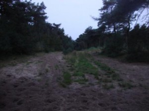 Oostelbeers_2010-10-02